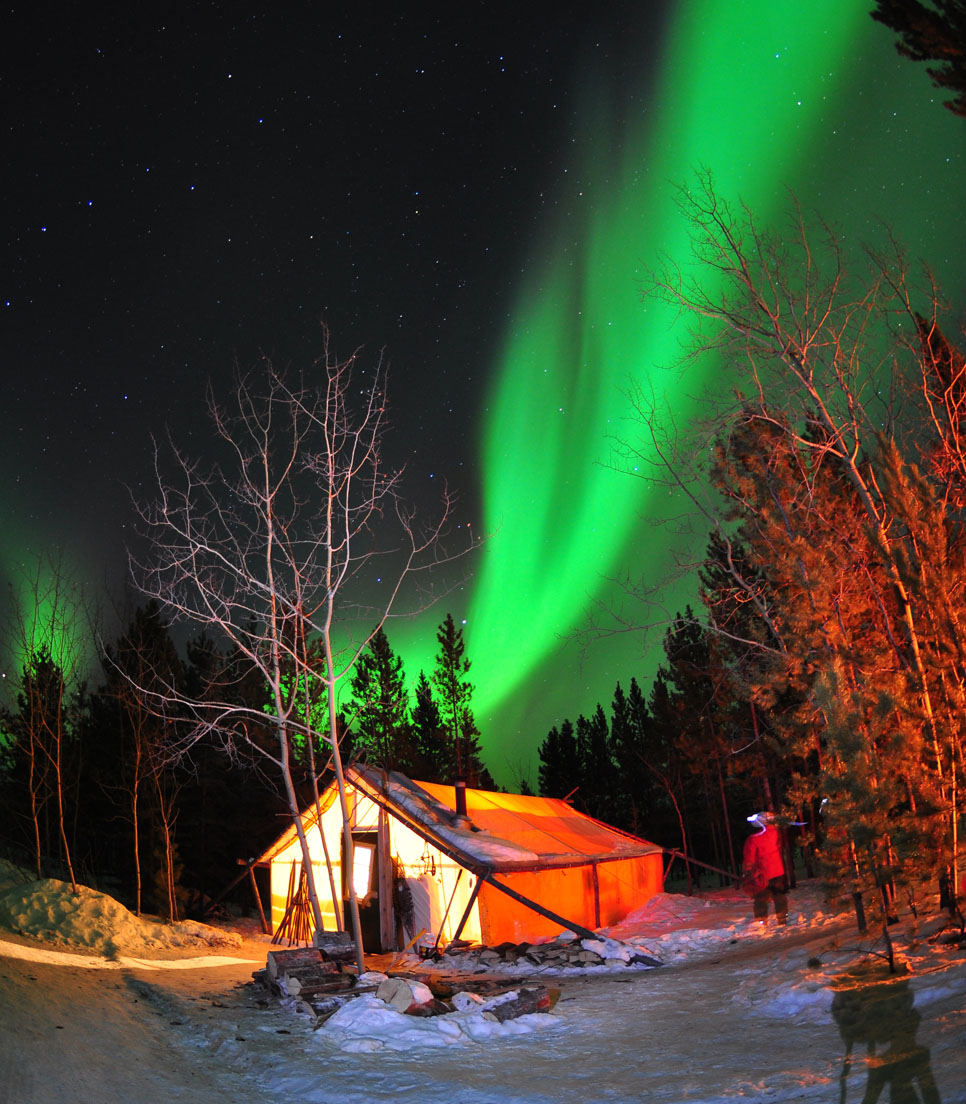 Hauptmotiv/Winterreisen/WInter Aktivreisen/Northern Lights and Mushing/01