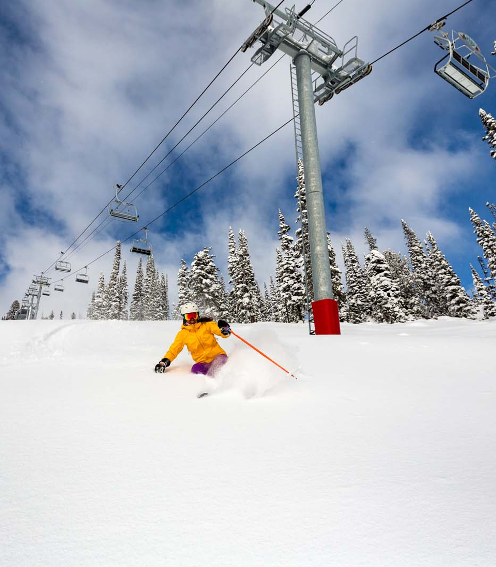 USA/Wyoming/Jackson Hole Mountain Resort
