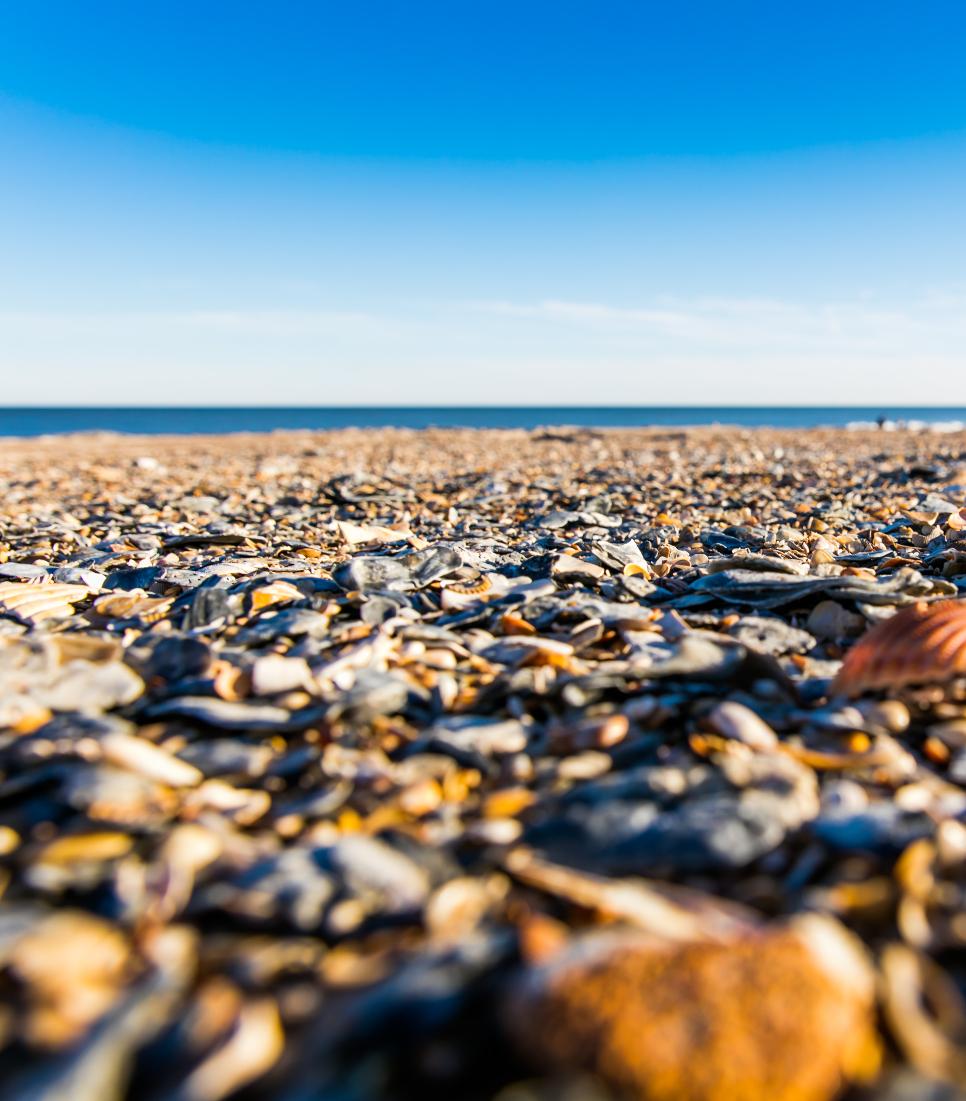 Mietwagenreise USA - Beaches of Florida » CRD