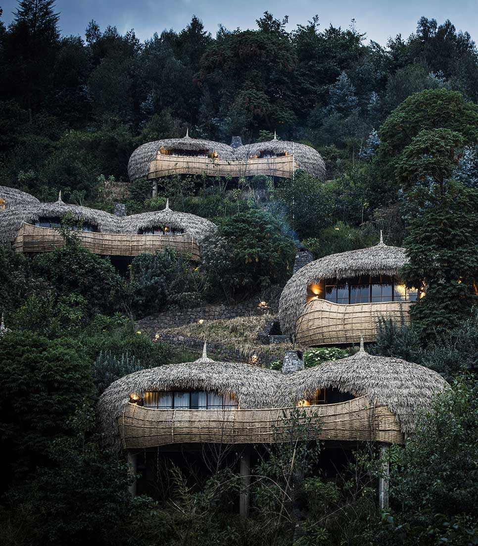 Hauptmotiv/Luxury Travel/Ruanda Berggorillas/Bisate Lodge