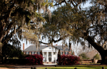Boone Hall Plantation in Charleston